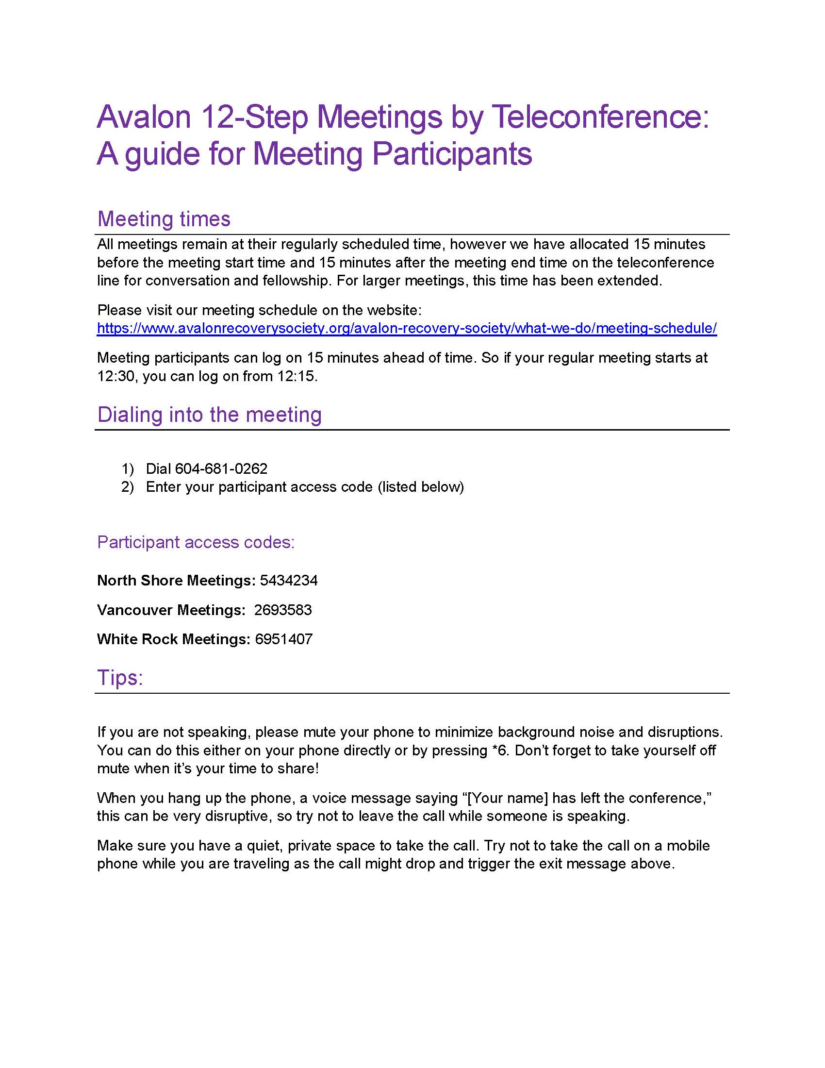 Guide for Meeting Participants